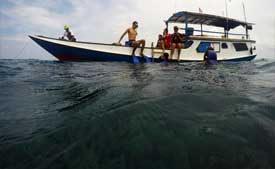 Snorkeling by boat at Karimunjawa