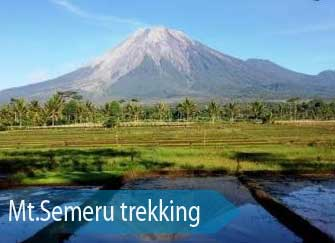 Mt. Semeru - the highest mountain in Java and an active volcano