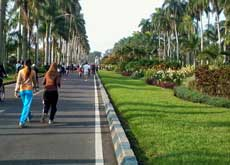 Ijen Boulevard, car free day - free for runners