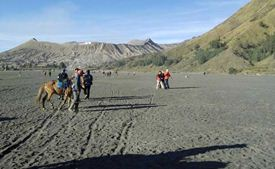 Bromo's moonlike Sea of Sand in the 10 km wide caldera - East Java, Indonesia
