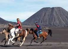 Local transport at mount Bromo (horse power). Mount Batok in the background. East Java.